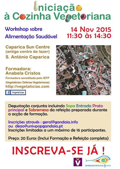 workshop-CaparicaSunCenter